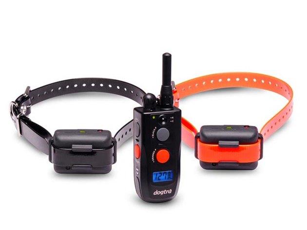 Электронный ошейник для эффективной дрессуры собак