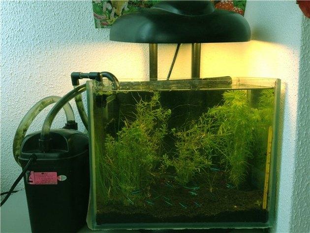 Фильтр своими руками на аквариум 200 литров